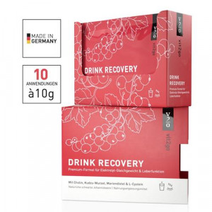 VIT2GO DRINK RECOVERY Pulver